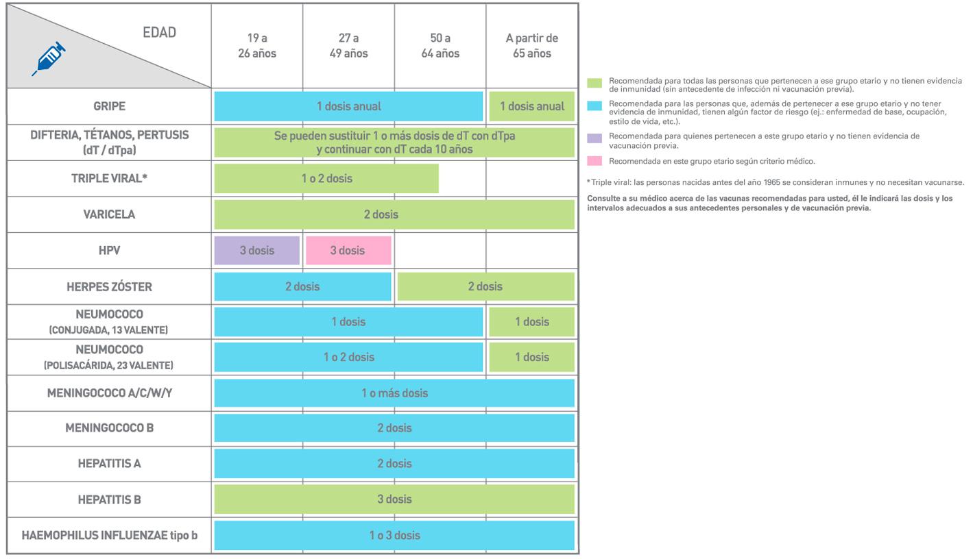 CALENDARIO VACUNACION ADULTOS